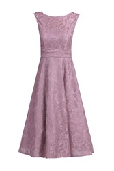 Jolie Moi Lace Bonded Fit And Flare Dress Pink