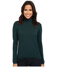 Pendleton Classic Turtleneck Sweater Evergreen Women's Long Sleeve Pullover