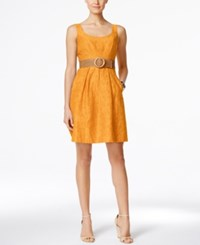 Nine West Belted Burnout Fit And Flare Dress Canyon