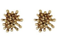 Oscar De La Renta Starfish Button C Earrings Light Gold