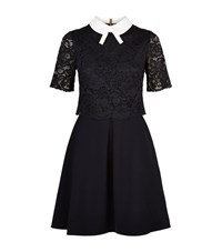 Ted Baker Dixxy Lace Bodice Dress Female Black