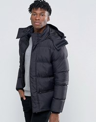 French Connection Bubble Jacket Black