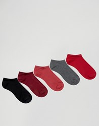 Asos Trainer Socks In Plum 5 Pack Multi