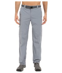 Columbia Silver Ridge Cargo Pant Grey Ash Men's Clothing Gray