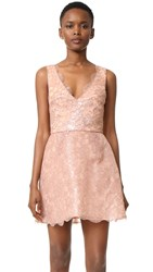 Monique Lhuillier Sleeveless Structured Dress Rose Gold