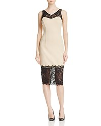 Alexia Admor Lace Trim Scuba Bodycon Dress Compare At 179 Nude