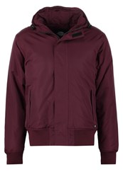 Dickies Cornwell Winter Jacket Maroon Bordeaux