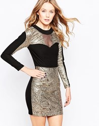 Lashes Of London Jacquard Dress With Contrast Collar Blackgold