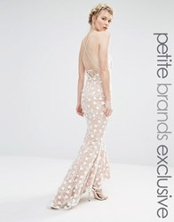 Jarlo Petite Halter Maxi Dress With Strapy Back Detail In All Over Pretty Lace Nude Pink