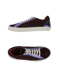 Kowalski Low Tops And Trainers Deep Purple