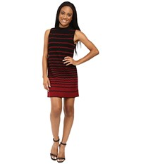 Nic Zoe Petite Fall Fever Dress Multi Women's Dress