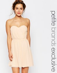 Tfnc Petite Wedding Bandeau Chiffon Mini Dress Pink