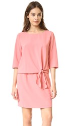 Cupcakes And Cashmere Mini Dress With Tie Detail Pink Blush