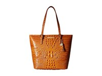 Brahmin Asher Dark Rum Tote Handbags Tan