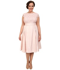 Adrianna Papell Plus Size Shimmer Side Panel Tuck Lace Bodice Dress Petal Women's Dress Pink