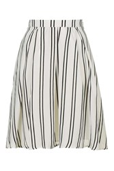 Striped A Line Skirt By Glamorous Petites White