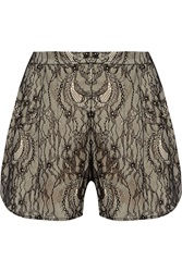 Haute Hippie Modal Lace Shorts Black