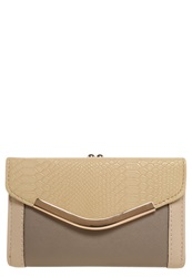 New Look Mel Wallet Mink Multicoloured