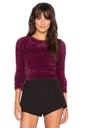 Chaser Long Sleeve Crop Sweater Purple