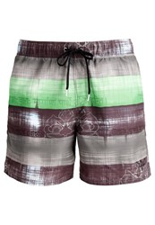 Chiemsee Efisio Swimming Shorts Green
