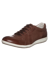 Stonefly Lucky Trainers Cigar Brown