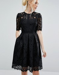 Ted Baker Engineered Lace Dress With Full Skirt Black