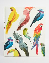 Paperchase Let's Squawk Bird Large Album Multi