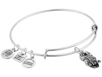 Alex And Ani Charity By Design Ode To The Owl Charm Bangle Rafaelian Silver Finish Bracelet
