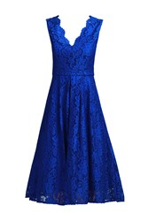Jolie Moi Scalloped V Neck Lace Dress Royal Blue