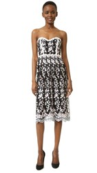 Parker Black Sonny Lace Dress Grey