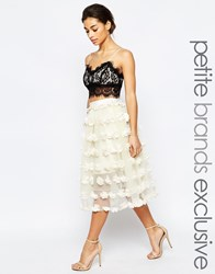 True Decadence Petite 3D Applique Tulle Prom Skirt Cream