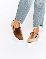 Asos Duchess Slip On Trainers Taupe Grey