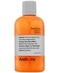 Anthony Logistics For Men Anthony Facial Scrub 8 Oz