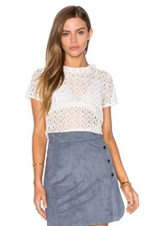Lucy Paris Lace Frilling Top White