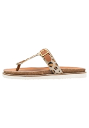 Eden Flip Flops Brown