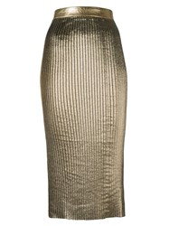 Markus Lupfer Fitted Mid Skirt Metallic