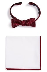 The Tie Bar Men's Bow And Pocket Square Set