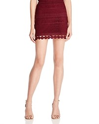 Aqua Embroidered Mini Skirt Wine