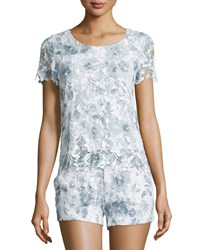 Joie Devine Short Sleeve Lace Top Dusk Size Xx Small