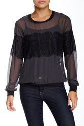 Gold Hawk Lace Pullover Silk Blouse Gray