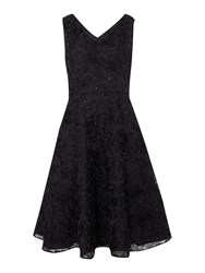 Untold Textured Floral Fit And Flare Dress Black