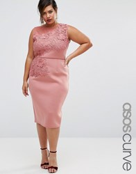 Asos Curve Salon Flower Embroidered Scuba Pencil Dress Rosewood Pink
