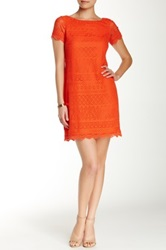 Maggy London Short Sleeve Lace Shift Dress Orange