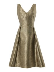 Untold Metallic Fit And Flare Dress Gold