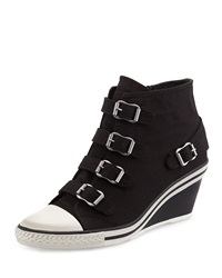 Ash Genialbis Buckled Wedge Sneaker Black