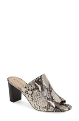 Women's Via Spiga 'Wynola' Mule Black White Leather
