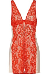 Mimi Holliday Strawberry Bomb Lace And Silk Satin Chemise Red