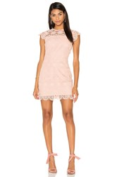 Endless Rose Crew Neck Lace Mini Dress Pink