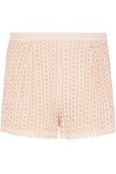 See By Chloe Stretch Crepe Trimmed Guipure Lace Shorts Pink