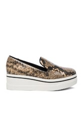 Stella Mccartney Binx Platform Loafers In Animal Print Brown Animal Print Brown